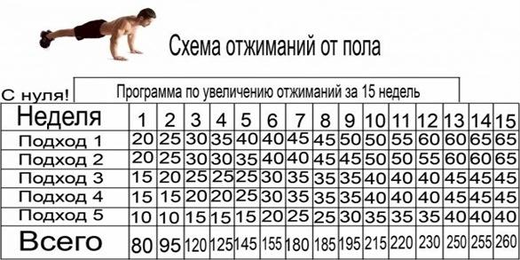 программа тренировок дома для девушек для похудения